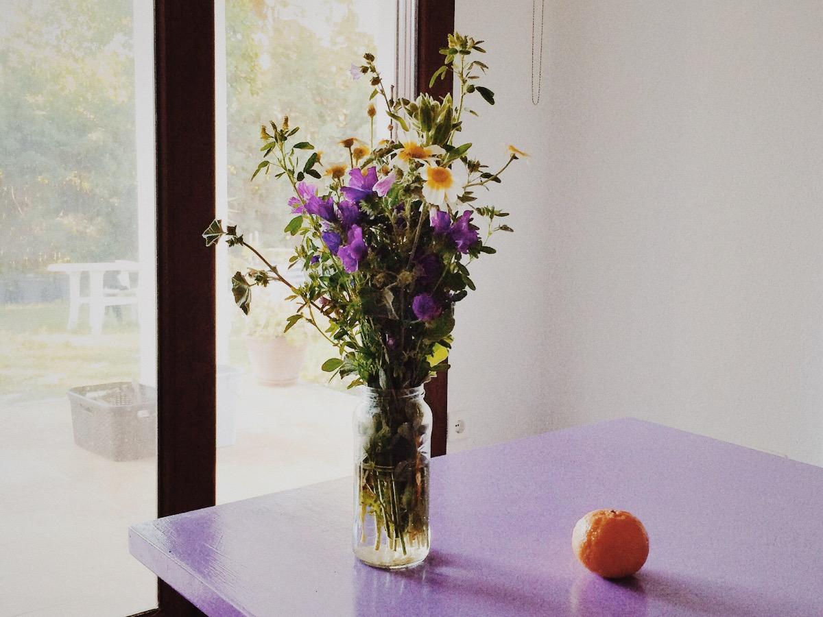 Весна в Андалусии, блог Марины Гиллер