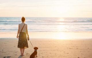 7 уроков жизни от моей собаки