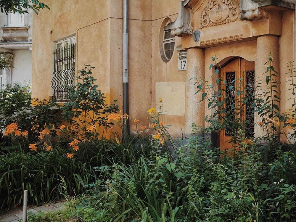 Львов в июле, Блог Марины Гиллер
