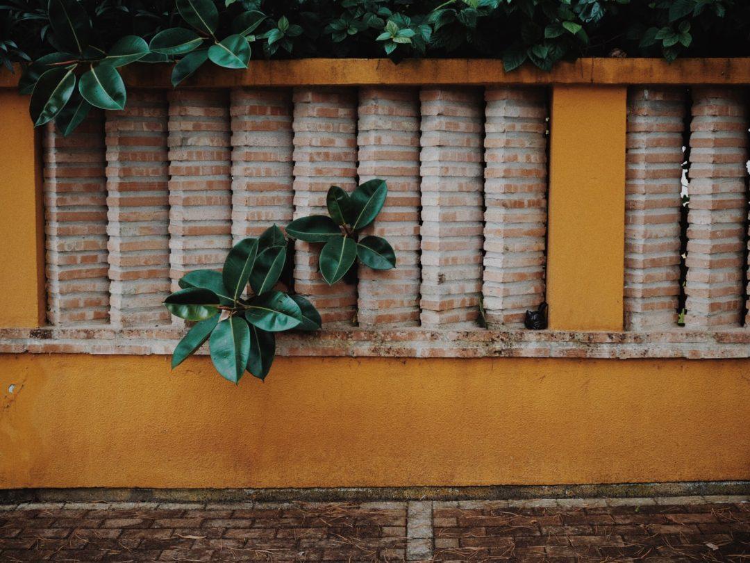 Как перестать ныть и стоит ли это делать, Блог Марины Гиллер