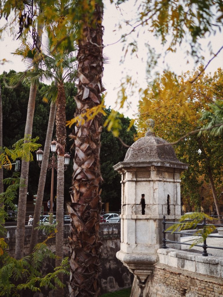 Севилья в ноябре, Блог Марины Гиллер